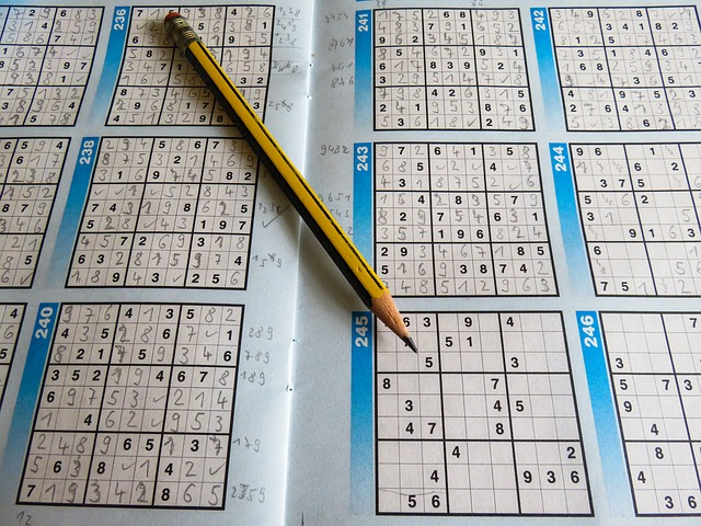 Sudoku w odniesieniu do empatii